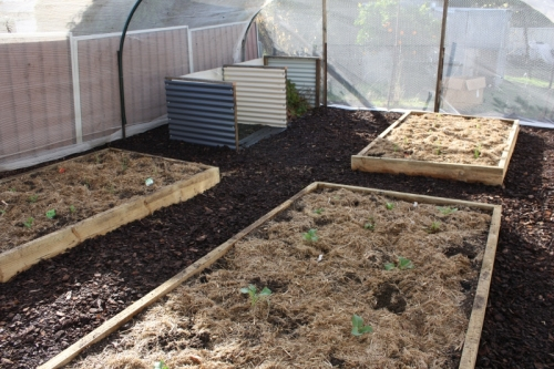 Ag Pipe Hoop Vegetable Netting - Our Family Projects